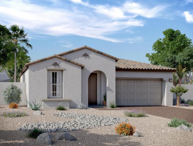 12534 N 143RD Lane, Surprise, AZ 85379 (MLS #5762444) :: Phoenix Property Group