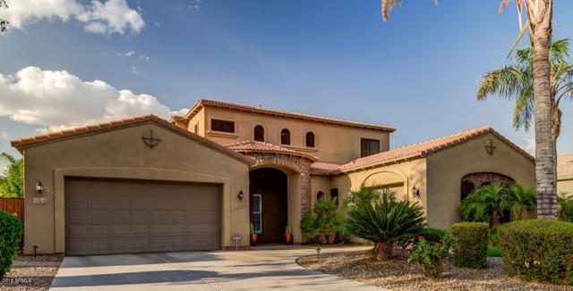 3312 E Powell Place, Chandler, AZ 85249 (MLS #5762489) :: My Home Group