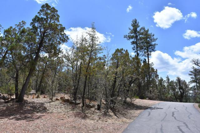 3479 N Wilderness Trail, Pine, AZ 85544 (MLS #5762564) :: Yost Realty Group at RE/MAX Casa Grande