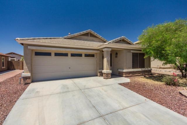 2184 S 160TH Drive, Goodyear, AZ 85338 (MLS #5762582) :: My Home Group