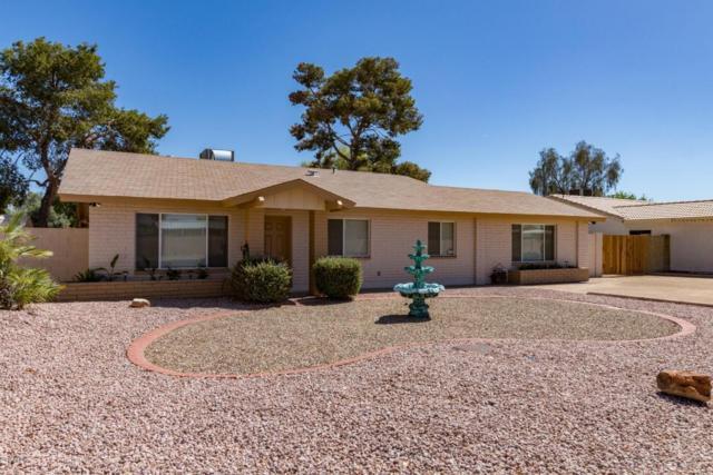 3441 E Paradise Lane, Phoenix, AZ 85032 (MLS #5762583) :: My Home Group