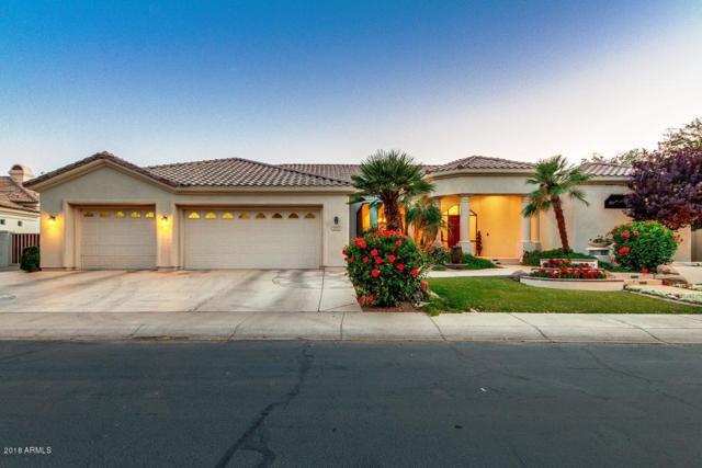 1211 W Marina Drive, Chandler, AZ 85248 (MLS #5762634) :: Arizona 1 Real Estate Team
