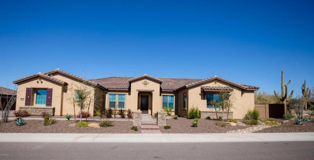 6112 E Calle De Pompas, Cave Creek, AZ 85331 (MLS #5762782) :: My Home Group