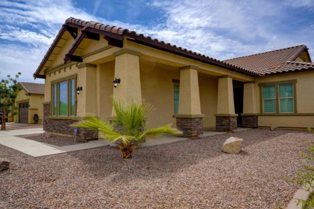 20877 E Via Del Jardin Court, Queen Creek, AZ 85142 (MLS #5762837) :: The Everest Team at My Home Group