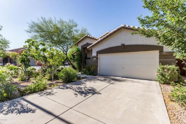 1824 E Chilton Drive, Tempe, AZ 85283 (MLS #5762893) :: Yost Realty Group at RE/MAX Casa Grande