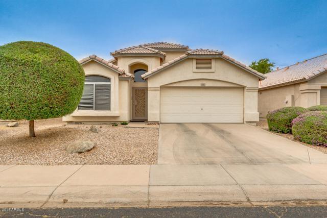 2132 E Rosemonte Drive, Phoenix, AZ 85024 (MLS #5762936) :: Cambridge Properties