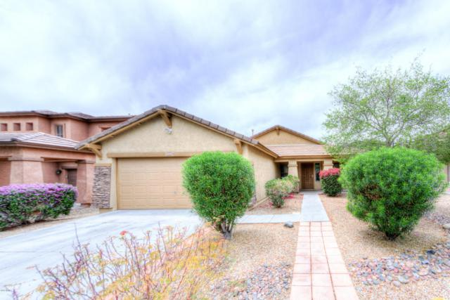 16464 N 153RD Avenue, Surprise, AZ 85374 (MLS #5762942) :: The Everest Team at My Home Group