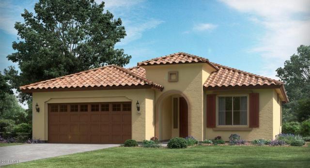 4666 N 204TH Lane, Buckeye, AZ 85396 (MLS #5762952) :: Desert Home Premier