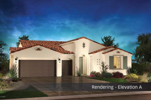 5287 N Grand Canyon Drive, Eloy, AZ 85131 (MLS #5763010) :: Yost Realty Group at RE/MAX Casa Grande