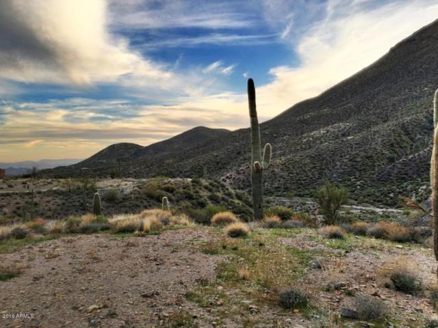 9468 E High Canyon Drive, Scottsdale, AZ 85262 (MLS #5763018) :: RE/MAX Excalibur