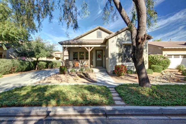 15366 W Old Oak Lane, Surprise, AZ 85379 (MLS #5763071) :: Phoenix Property Group