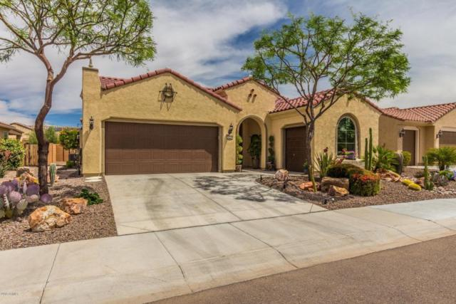 26274 W Firehawk Drive, Buckeye, AZ 85396 (MLS #5763124) :: Yost Realty Group at RE/MAX Casa Grande