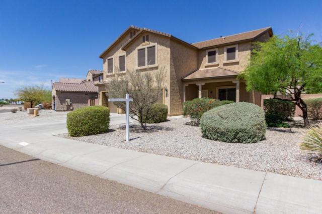 30264 W Sheila Lane, Buckeye, AZ 85396 (MLS #5763343) :: My Home Group