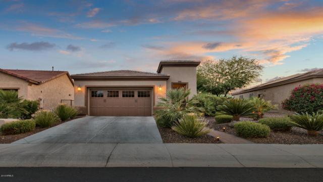 29114 N 129TH Avenue, Peoria, AZ 85383 (MLS #5763514) :: Desert Home Premier