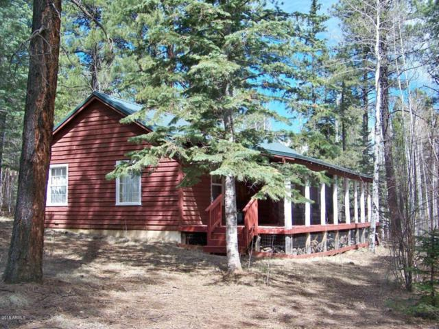 45 County Road 1322, Greer, AZ 85927 (MLS #5763541) :: RE/MAX Excalibur