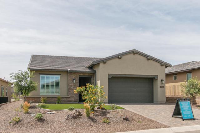 17675 E Woolsey Way, Rio Verde, AZ 85263 (MLS #5763582) :: Desert Home Premier
