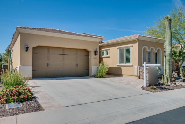 1625 E Hesperus Way, San Tan Valley, AZ 85140 (MLS #5763633) :: Yost Realty Group at RE/MAX Casa Grande