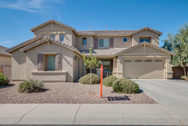 44570 W Sedona Trail, Maricopa, AZ 85139 (MLS #5763691) :: Yost Realty Group at RE/MAX Casa Grande