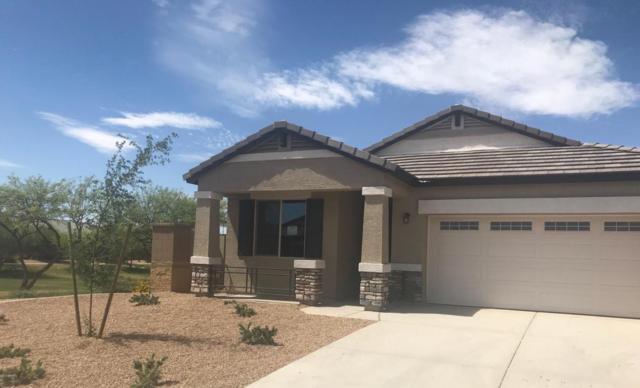 41300 W Williams Way, Maricopa, AZ 85138 (MLS #5763692) :: Yost Realty Group at RE/MAX Casa Grande