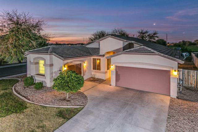 7008 W Southgate Avenue, Phoenix, AZ 85043 (MLS #5763861) :: The Everest Team at My Home Group