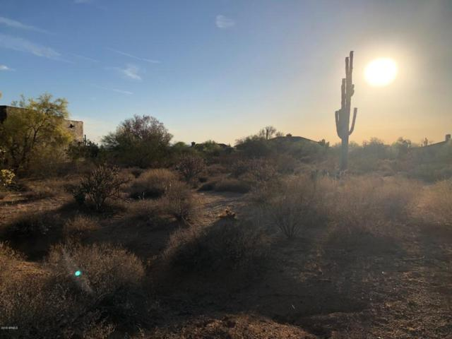 9130 E Buckskin Trail, Scottsdale, AZ 85255 (MLS #5764004) :: Yost Realty Group at RE/MAX Casa Grande