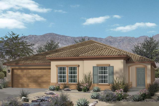 20503 N Madeline Street, Maricopa, AZ 85138 (MLS #5764070) :: Yost Realty Group at RE/MAX Casa Grande