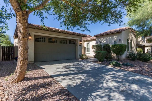 15350 W Eugene Terrace, Surprise, AZ 85379 (MLS #5764118) :: Phoenix Property Group