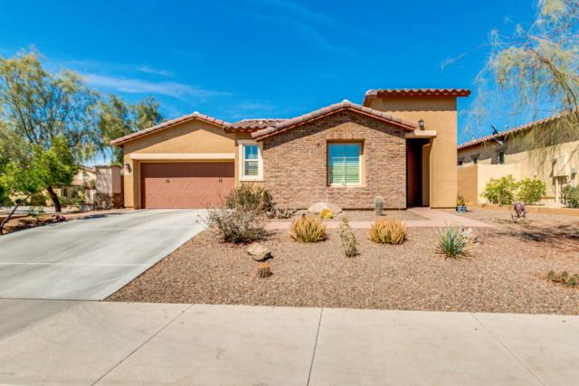 14775 S 178TH Lane, Goodyear, AZ 85338 (MLS #5764195) :: The Daniel Montez Real Estate Group