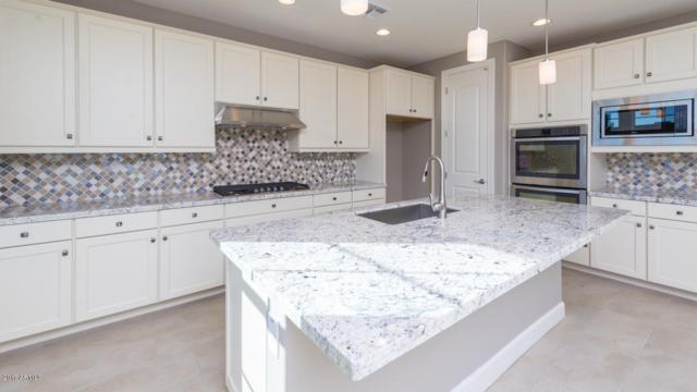 901 W Yosemite Drive, Chandler, AZ 85248 (MLS #5764323) :: Essential Properties, Inc.