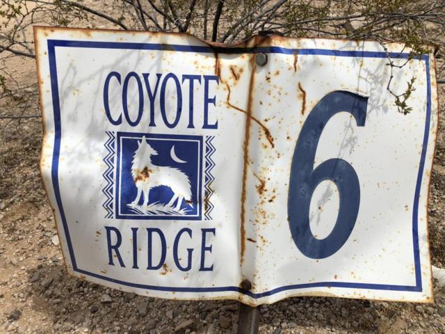 0 Coyote Ridge, Tonopah, AZ 85354 (MLS #5764506) :: The Daniel Montez Real Estate Group