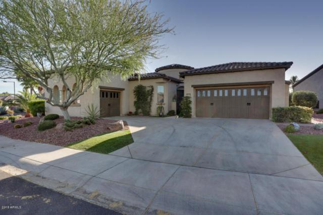 28378 N 124TH Drive, Peoria, AZ 85383 (MLS #5764574) :: Desert Home Premier