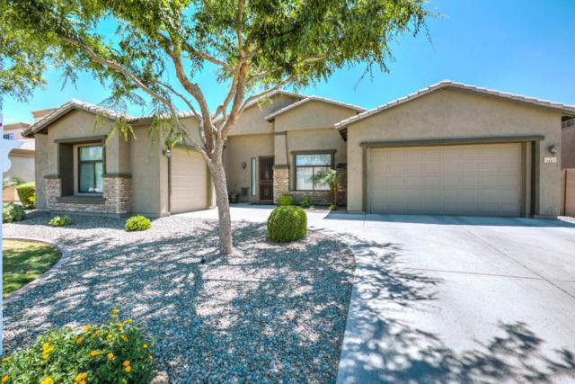 3115 E Bartlett Place, Chandler, AZ 85249 (MLS #5764622) :: My Home Group