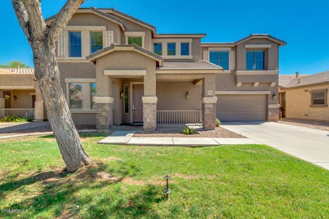 19395 E Canary Way, Queen Creek, AZ 85142 (MLS #5764691) :: Essential Properties, Inc.