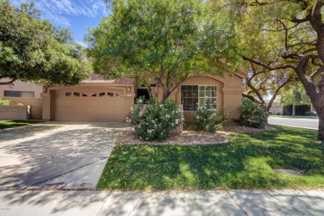 8992 E Mescal Street, Scottsdale, AZ 85260 (MLS #5764788) :: Cambridge Properties
