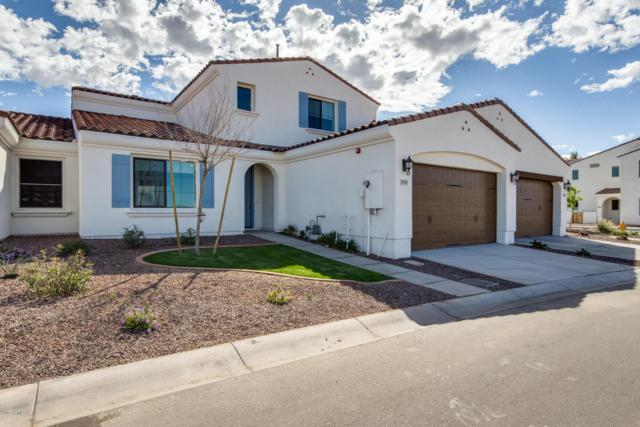 14200 W Village Parkway #2141, Litchfield Park, AZ 85340 (MLS #5764878) :: The Results Group