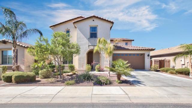 2533 E Tonto Drive, Gilbert, AZ 85298 (MLS #5764888) :: Essential Properties, Inc.