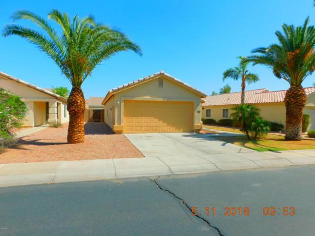 12220 W Dahlia Drive, El Mirage, AZ 85335 (MLS #5764894) :: My Home Group