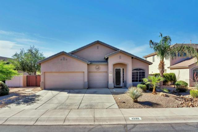 43185 W Bunker Drive, Maricopa, AZ 85138 (MLS #5764932) :: Yost Realty Group at RE/MAX Casa Grande