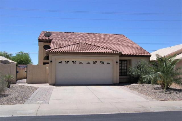1641 E Cindy Street, Chandler, AZ 85225 (MLS #5764977) :: My Home Group