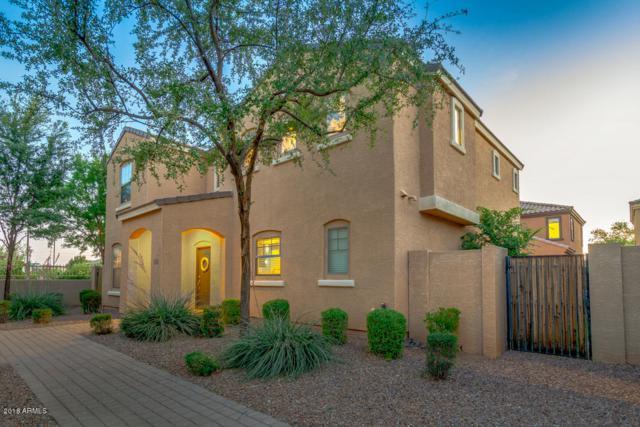 3299 E Loma Vista Street, Gilbert, AZ 85295 (MLS #5765026) :: Essential Properties, Inc.