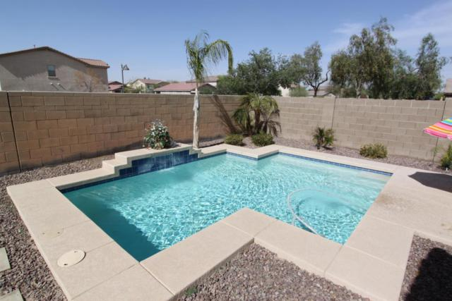 44288 W Eddie Way, Maricopa, AZ 85138 (MLS #5765114) :: My Home Group