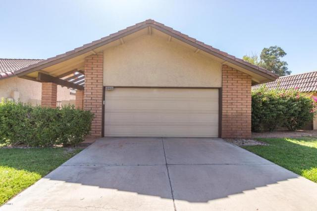 12401 S Chippewa Drive, Phoenix, AZ 85044 (MLS #5765358) :: Kepple Real Estate Group