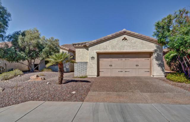 26828 N 128TH Drive, Peoria, AZ 85383 (MLS #5765381) :: Desert Home Premier