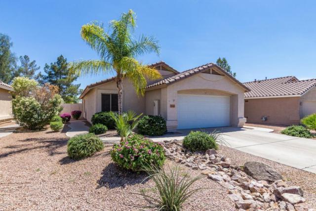 9505 E Naranja Avenue, Mesa, AZ 85209 (MLS #5765429) :: The Kenny Klaus Team