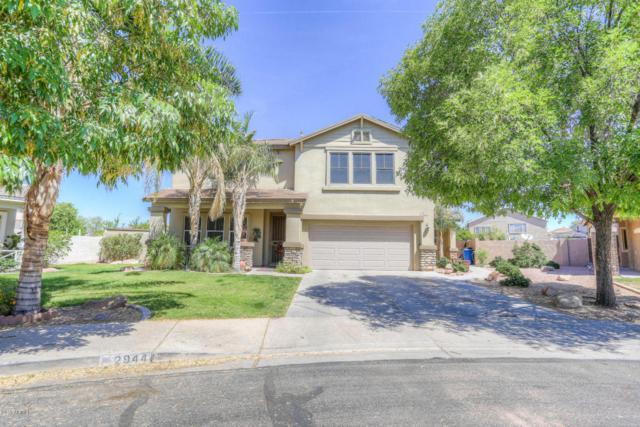 2944 S Sabrina Circle, Mesa, AZ 85212 (MLS #5765536) :: My Home Group