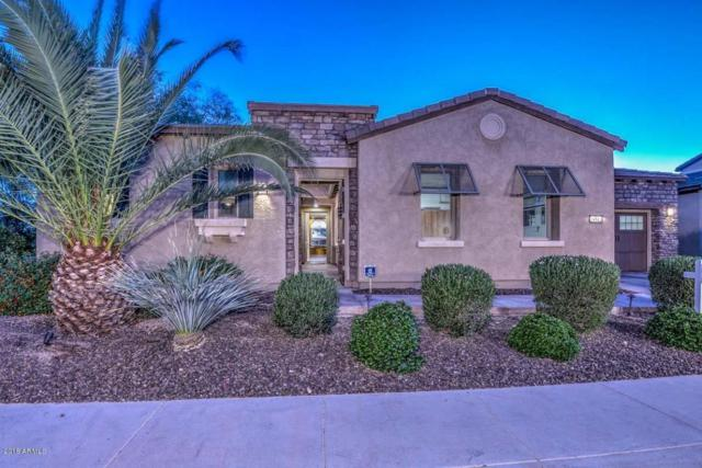 29512 N 128th Lane, Peoria, AZ 85383 (MLS #5765614) :: Yost Realty Group at RE/MAX Casa Grande