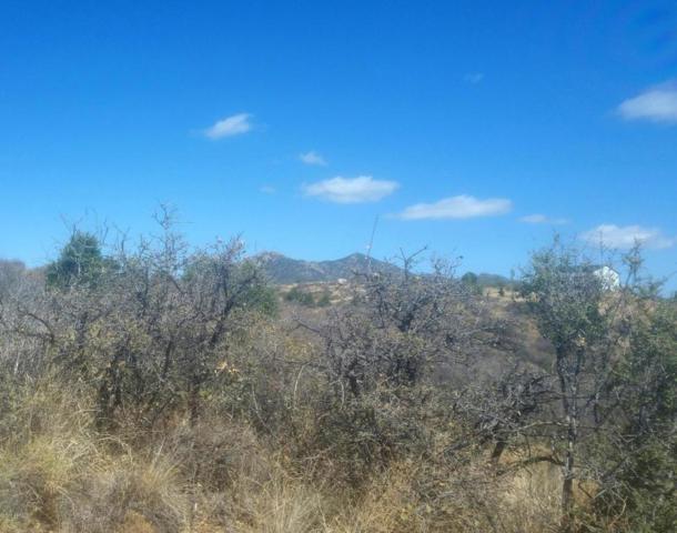 17670 S Juniper Drive, Peeples Valley, AZ 86332 (MLS #5765655) :: Yost Realty Group at RE/MAX Casa Grande