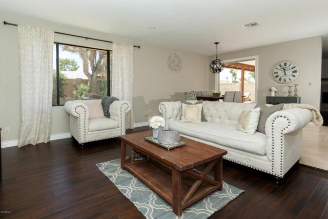 5237 E Winchcomb Drive, Scottsdale, AZ 85254 (MLS #5765684) :: Cambridge Properties