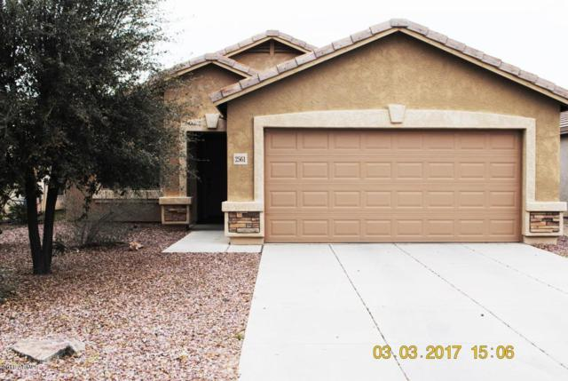 2561 E San Manuel Road, San Tan Valley, AZ 85143 (MLS #5765694) :: Cambridge Properties