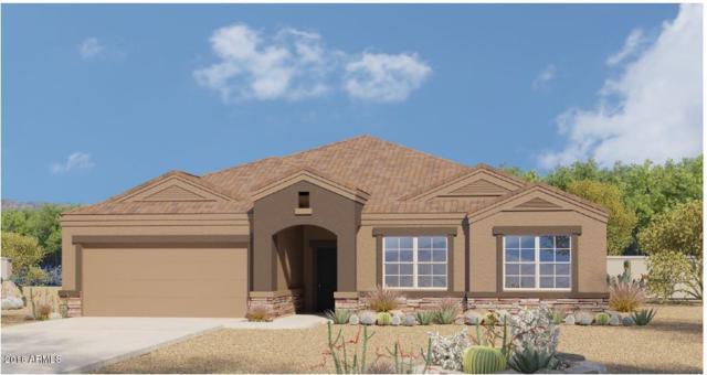 25918 N 138TH Lane, Peoria, AZ 85383 (MLS #5765720) :: My Home Group